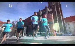 2. RST Półmaraton Świdnicki - zapowiedź